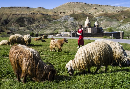 Armenian Monastic Ensembles of Iran