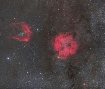 IC1369, Flying bat and Giant squid nebulae (CCD=DSLR)
